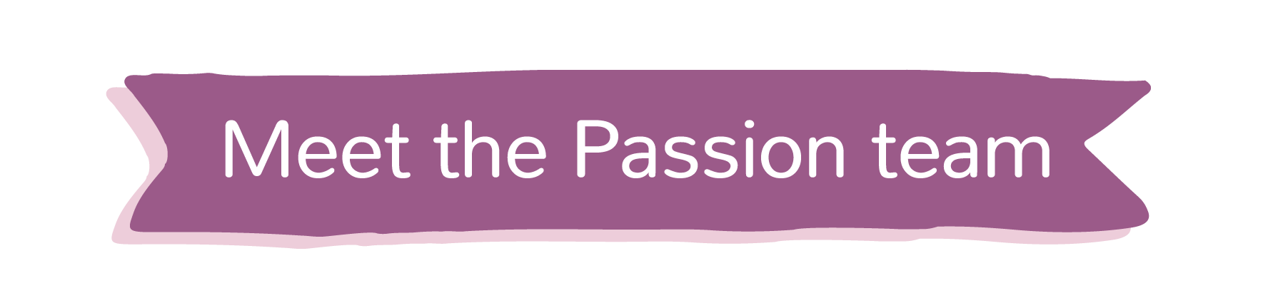 Meet the Passion team